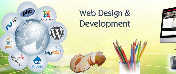 web development services in delhi